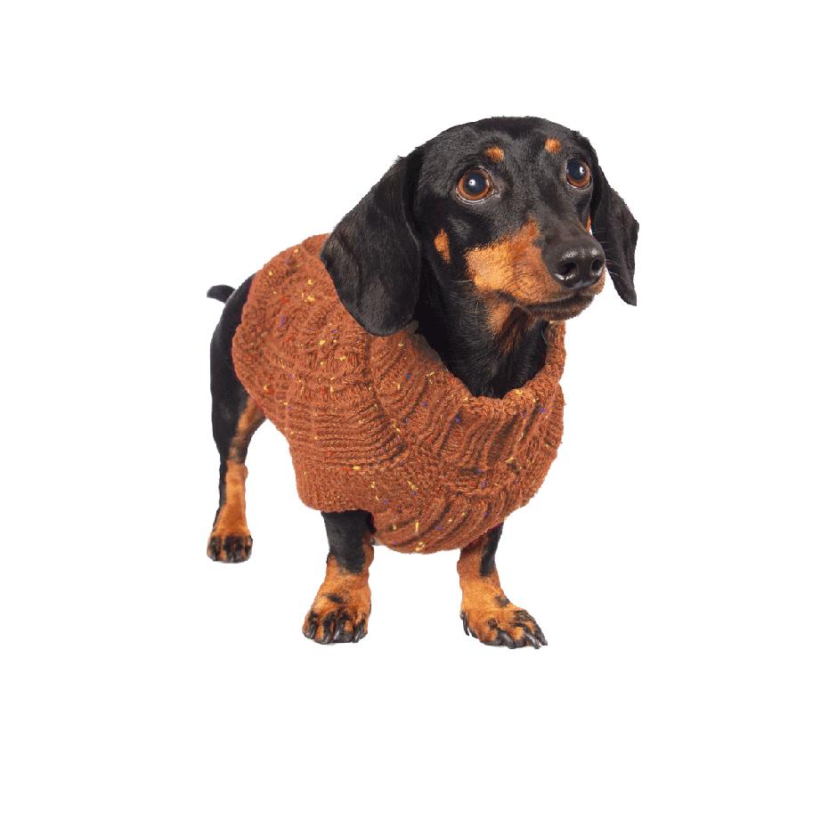 Este suéter es grueso y súper suavecito al tacto. En un estilo exclusivo de trenzas hará que los amigos del vecindario le den la bienvenida a tu peludo con un baile de colas sin igual! Una línea sofisticada diseñada para tu perro pensando en ti! Nuestras chompas se tejen cuidadosamente para brindar comodidad, resistencia, durabilidad y mucho estilo. Gloria usa talla X-Small En esta misma página, más abajo, encontrarás la<strong>GUÍA DE MEDIDAS</strong> específica de este suéter para que elijas correctamente la talla de tu perro.
