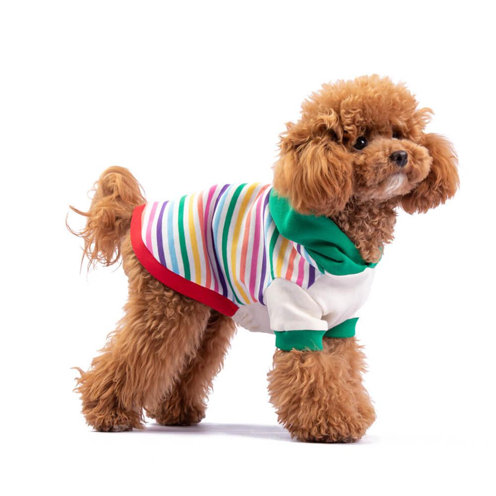 El modelo Rainbow en patrón de rayas queda lindo en los engreídos de casa, y la capucha le da ese toque especial. Encuéntralo en dos combinaciones: Azul y Natural. Tu peludo estará cómodo y feliz modelando su nuevo chachá. Kira es una Poodle mini de 6 meses. Usa talla XSmall. En esta misma página, más abajo, encontrarás la<strong>GUÍA DE MEDIDAS</strong> específica de este suéter para que elijas correctamente la talla de tu perro.