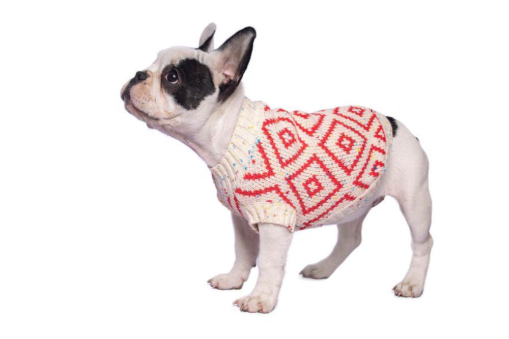 Sweaters Se amoldan bien al cuerpo del perro. Si tu perro es de esos que son más tacuchi, tomar en cuenta que el tejido no es 100% stretch. Ramona usa talla Small En esta misma página, más abajo, encontrarás la<strong>GUÍA DE MEDIDAS</strong> específica de este suéter para que elijas correctamente la talla de tu perro.
