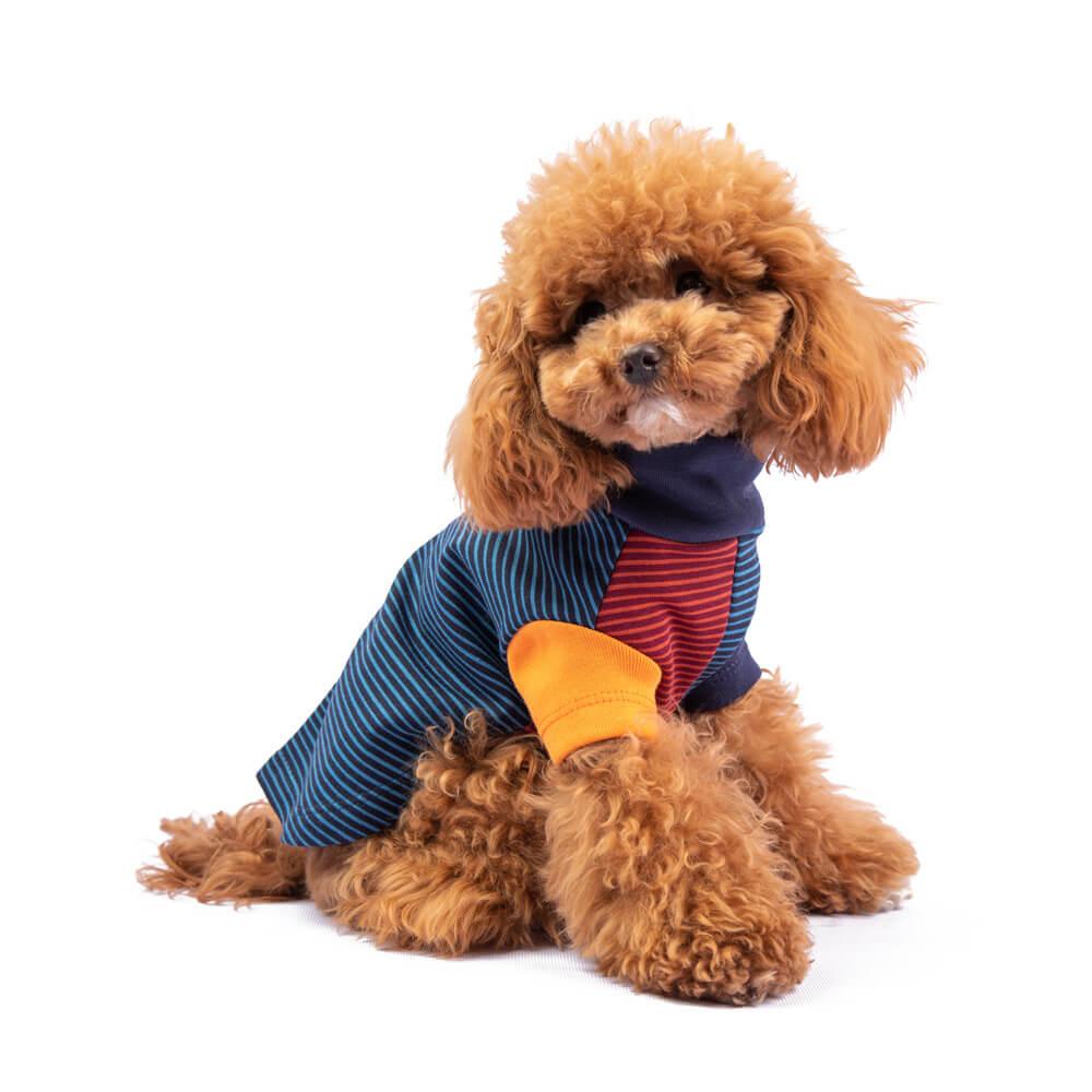 Rayas, rayas y más rayas, que se suman a la diversión y explosión de colores, perfectos para brillar esta temporada. Una línea sofisticada diseñada para tu perro pensando en ti! Nuestras chompas se tejen cuidadosamente para brindar comodidad, resistencia, durabilidad y mucho estilo. En esta misma página, más abajo, encontrarás la<strong>GUÍA DE MEDIDAS</strong> específica de este suéter para que elijas correctamente la talla de tu perro. <strong>¡Toma en cuenta que no todas las prendas siguen la misma tabla de medidas! Dentro de cada producto, encontrarás la tabla de medidas que corresponde al modelo.</strong> Colección 2020