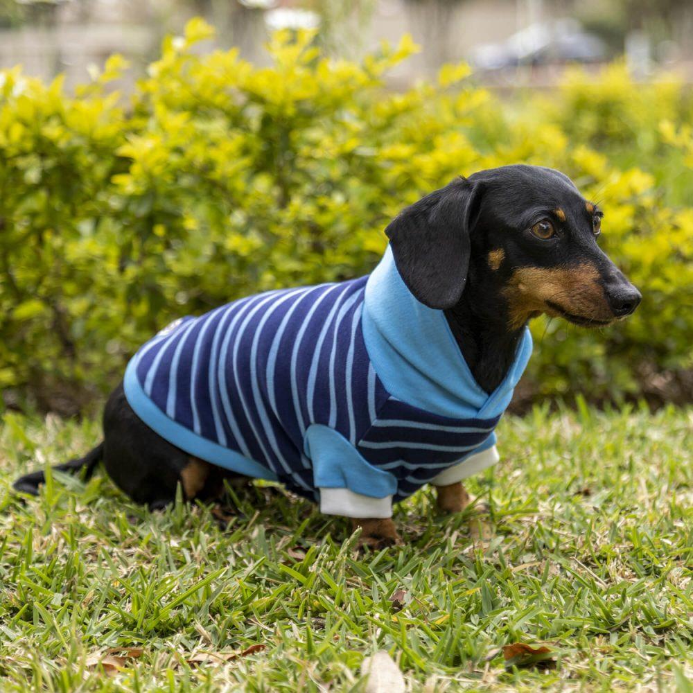 Sólo para perros con estilo único y original. <ul> <li>100% Algodón</li> <li>Hipoalergénico</li> <li>Cómodo estilo y stretchy</li> <li>Suave al tacto y fresco</li> </ul> En esta misma página, más abajo, encontrarás la GUÍA DE MEDIDAS específica de este polo para que elijas correctamente la talla de tu perro. <ul> <li>Gloria es una salchicha miniatura y usa talla Small.</li> <li>Maca es una poodle miniatura y usa talla Small</li> </ul>