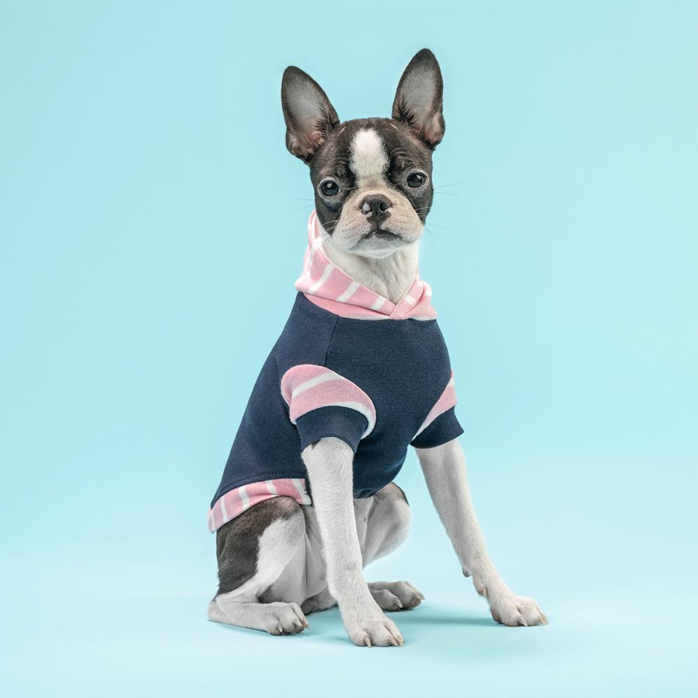 Sólo para perros con estilo único y original. <ul> <li>100% Algodón</li> <li>Hipoalergénico</li> <li>Cómodo</li> <li>Funcional</li> </ul> En esta misma página, encontrarás la <strong>GUÍA DE MEDIDAS</strong> de este polo para que elijas correctamente la talla de tu perro. <ul> <li>Zelda es una Boston Terrier de 3.5 meses y usa nuestro Baby Pink Stripes Hoodie para perro talla XXS</li> </ul>